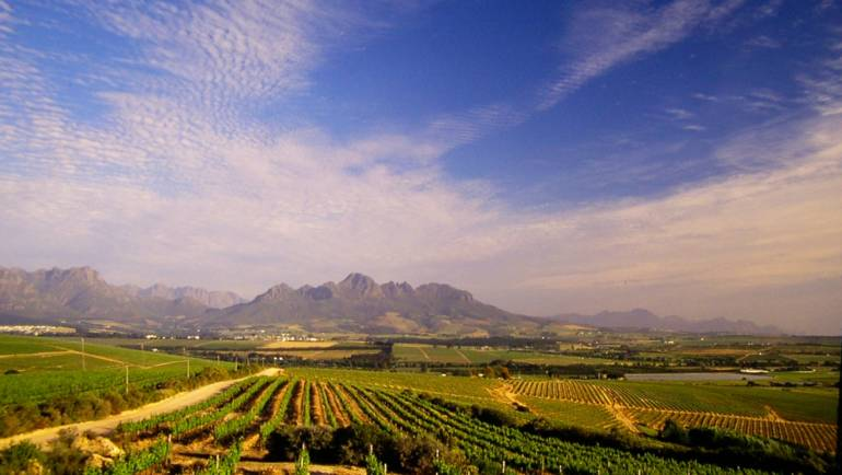 Stellenbosch To Be 'Uncovered' Through International Blogger Campaign
